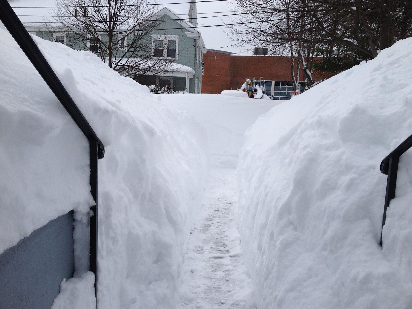 snow 2 15 15.jpg