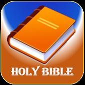 The Message Bible - Offline