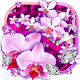 Diamonds and Orchids Live Wallpaper Download for PC Windows 10/8/7