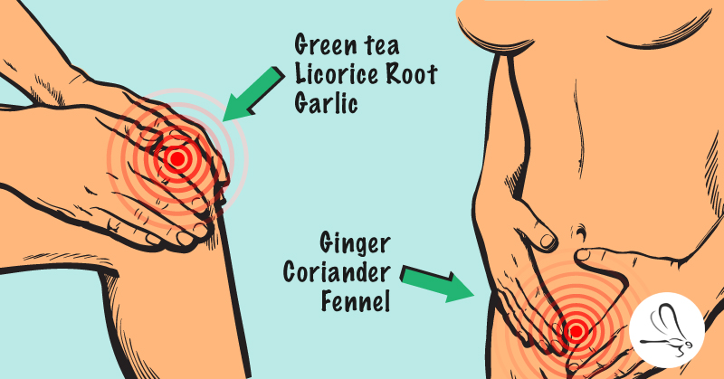 12 Powerful Spices That Will Help Treat 6 Common Health Problems