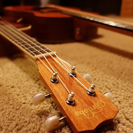 Uke by Randy Young - Artistic Objects Musical Instruments