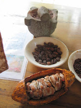 Photo: A quick introduction: From the cacao fruit, through the drying process, and finally ground into a paste