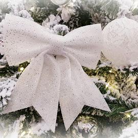 addobbo natalizio con glitter by Patrizia Emiliani - Public Holidays Christmas ( addobbo, glitter, natale,  )