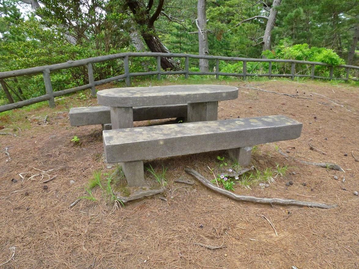恋岬のテーブルとベンチ