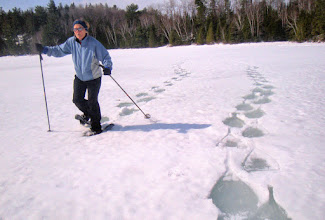 Photo: Even with snowshoes the crust was too soft to hold us above the water layer on the ice.