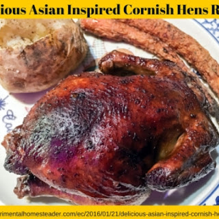 Delicious Asian Inspired Cornish Hens