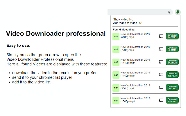 Video Downloader professional Screenshot