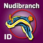 Nudibranch ID EAtlantic Med icon