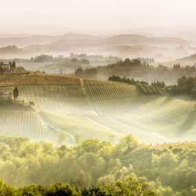 Sun Rise by Maurizio Martini - Landscapes Mountains & Hills ( countryside, haze, tuscany, italian, podere, farmhouse, beauty, house, landscape, spring, olive, farm, tree, nature, italia, idyllic, cypress, italy, orcia, hill, picturesque, pienza, peaceful, green, scenics, mysterious, mood, quirico, agriculture, morning, belvedere, homestead, rural, country, field, amazing, foggy, dawn, residence, fog, meadow, dreamland, agriturismo, scenery, sunrise, tuscan, garden, , #GARYFONGDRAMATICLIGHT, #WTFBOBDAVIS )