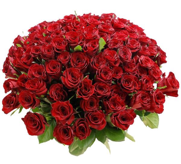 Самое интересное : Букет из роз в корзине - где стоит заказывать, а где нет