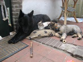 Photo: Samen vallen we in slaap
