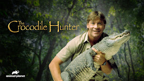 Crocodile Coast thumbnail
