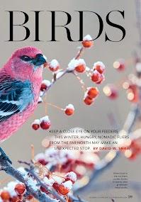Birds and Blooms- screenshot thumbnail