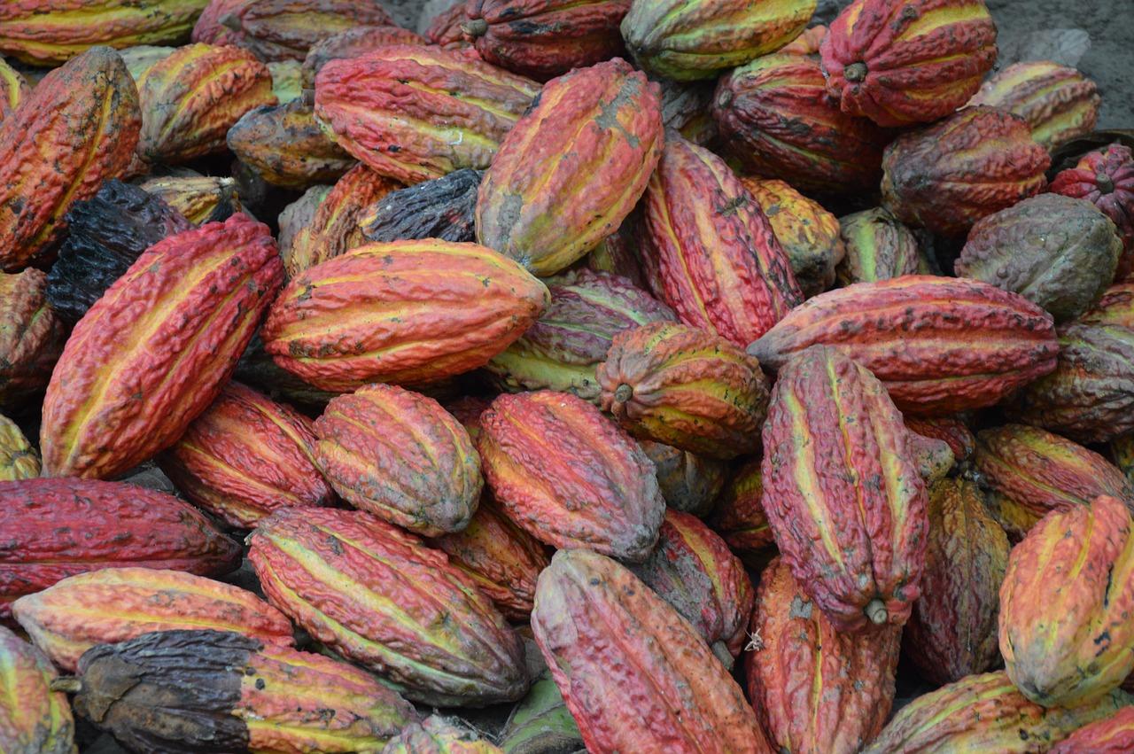 toored kakaooad
