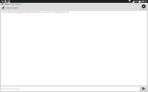 TCP Terminal Pro 10