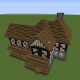 Step by Step Minecraft