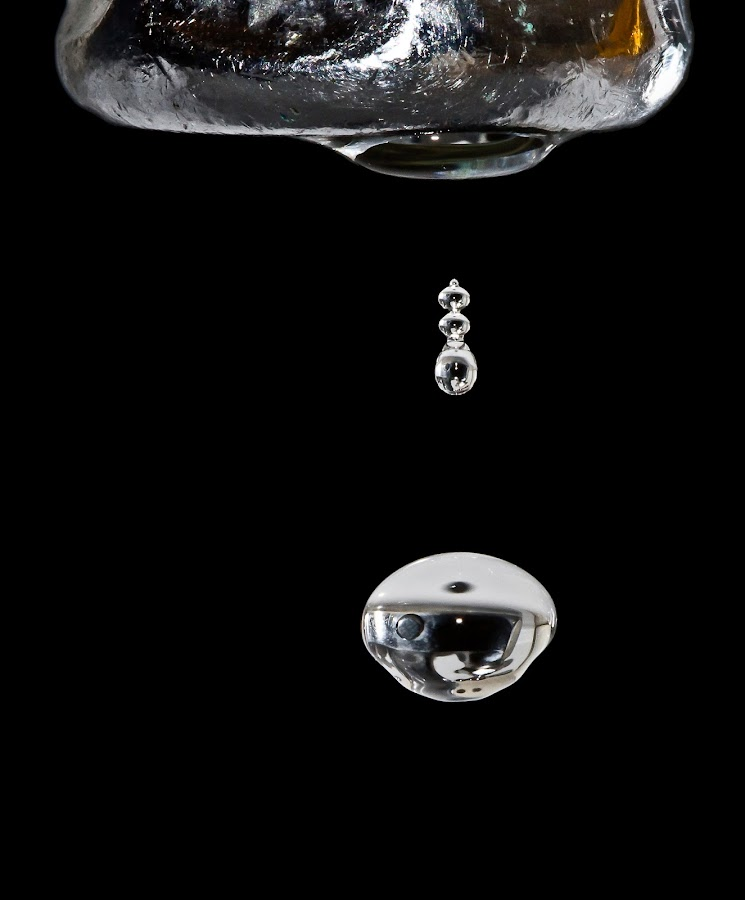 Bathroom Reflection by Ben Porway - Nature Up Close Natural Waterdrops ( black background, water, macro, silver, drops, metallic )