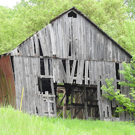 Weary & Worn by Chila Woychik - Buildings & Architecture Decaying & Abandoned ( barn, barns, abandoned, old barn, building )
