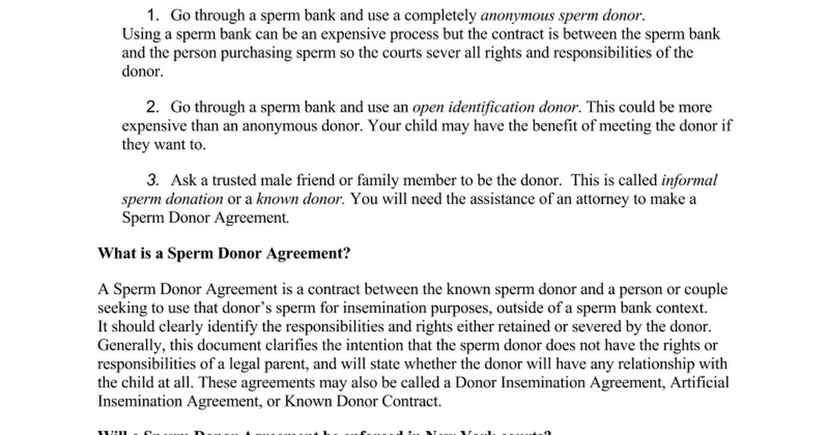 Sperm Donor Agreement Info Sheet 92214cx Google Docs