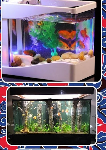 Download Mini Aquarium Design Free For Android Mini Aquarium Design Apk Download Steprimo Com