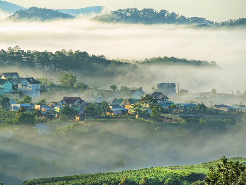 Dalat's mist