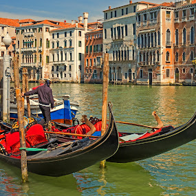 Gondolas On The Grand Canal Venice Italy by Graham Mulrooney - City,  Street & Park  Historic Districts ( water, building, northern italy, boats, grand canal, boat, people, world heritage site, structures, city, venetian, gondola, horizontal, mediterranean, buildings, venice, gondolas, italy )