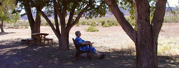 Photo: The trees around the Desert House of Prayer provide cool shade from the desert sun as a Sister takes time to pray and reflect.