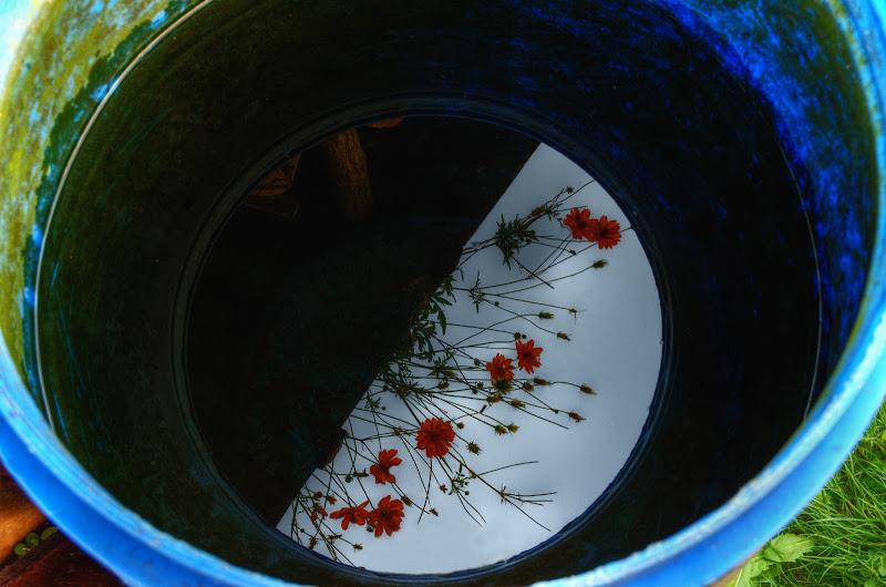 Flowers di Moreno re