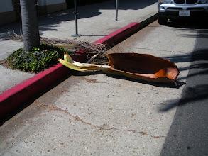 Photo: State St. Santa Barbara, CA, September 20, 2012