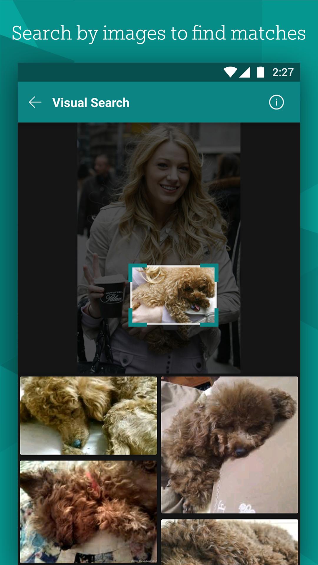 Bing Search screenshot #5