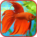 Aquarium Fish Freshwater free icon