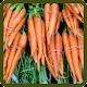 Tebak Bahasa Inggris Sayuran (game)