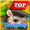 Guideplay Township Game icon