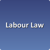 Labour Law Support