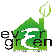 Evergreen Plywood