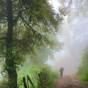 The unknown explorer  by Sayan Bhattacharya - Landscapes Mountains & Hills ( nature, forest, travel )