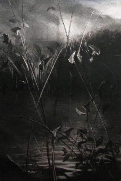 Leaf Tracks II, Charcoal by Jane Barrow
