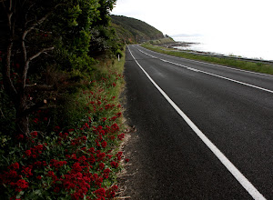 Photo: Year 2 Day 148 - As We Left Lorne on the GOR