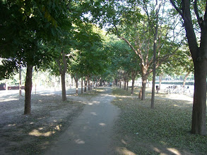 Photo: walking in the park along sector 10 towards the capital complex