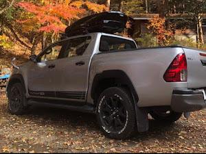 ハイラックス 4WD ピックアップのカスタム事例画像 ダイテルさんの2020年08月25日19:41の投稿