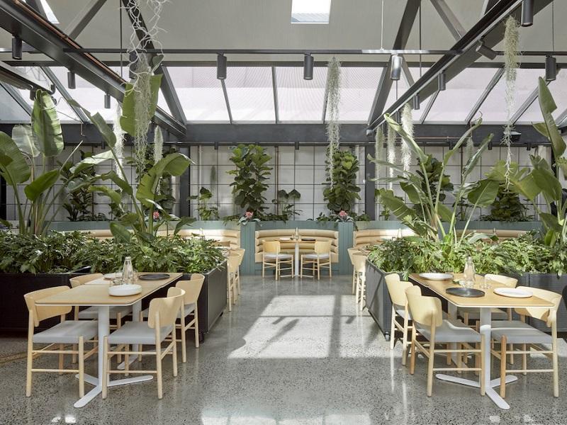 thiết kế quán cafe sân vườn   caykiengminhthao.com