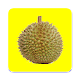 DURIAN Download on Windows