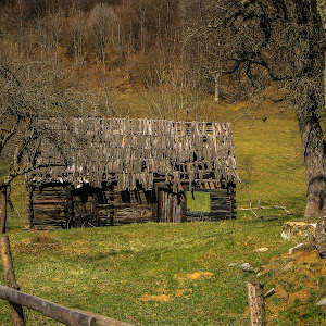 old wooden house-2.jpg