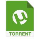 Torrent magnet finder