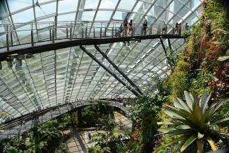 Photo: Mountain dome at the Gardens at the Bay
