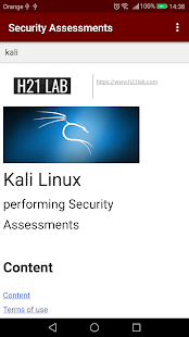 Security Assessments Documentation Screenshot