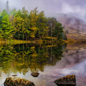 Blea Tarn by Steve BB - Landscapes Waterscapes ( mountains, lower langdales, cumbria, waterscape, blea tarn, vista, trees, landscape )