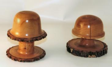 "Photo: Paul Mazzi  3 1/2"" x 4"" mushroom [apricot]"