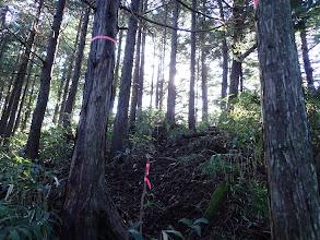 主尾根への登り