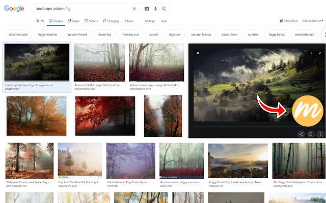 MockoFun Online Graphic Designer